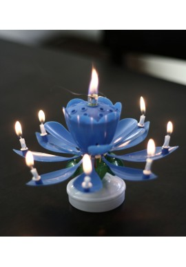 The Ultimate Brthday Candle